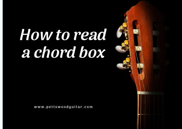 How to read a chord box